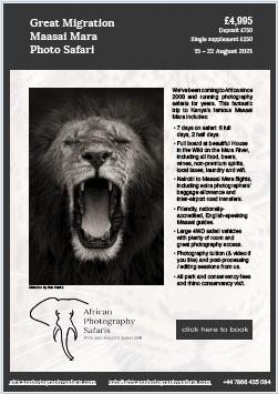 African Photography Safaris Kenya 2021 brochure download