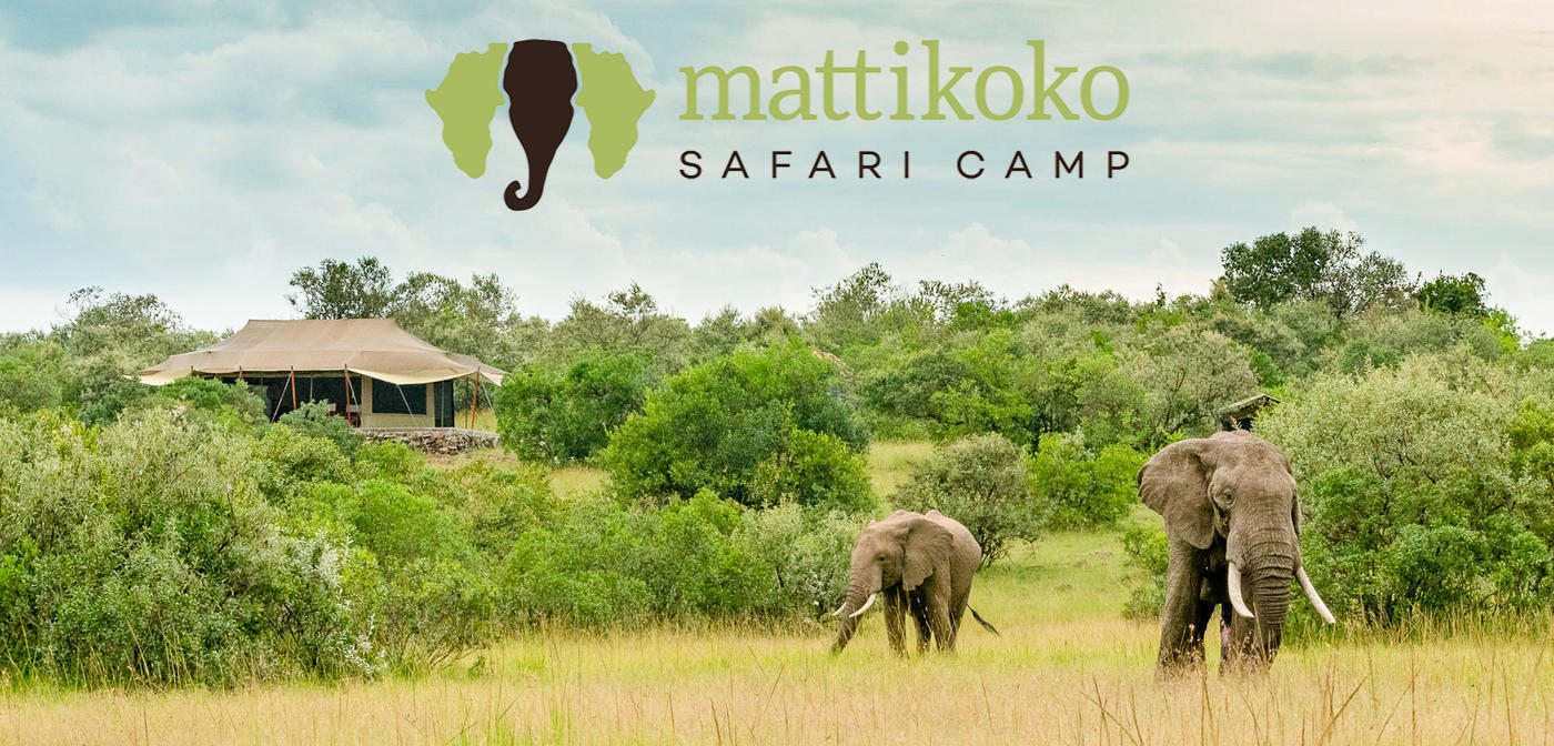 African Photography Safari Maasai Mara Mattikoko Lemek Conservancy